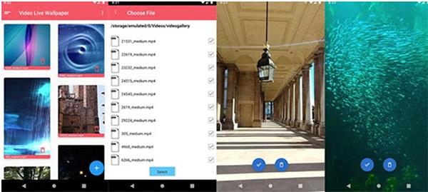 Cách cài đặt video làm hình nền OPPO bằng ứng dụng Live Wallpaper